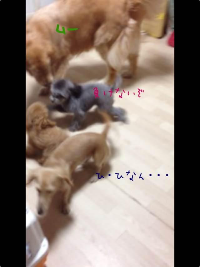 3o_20120929094938.jpg