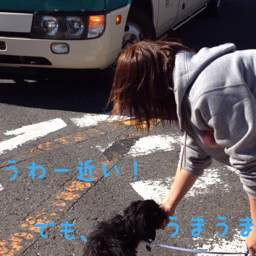 4_20121128115148.jpg
