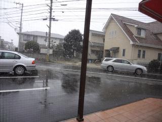 またまた雪♪♪
