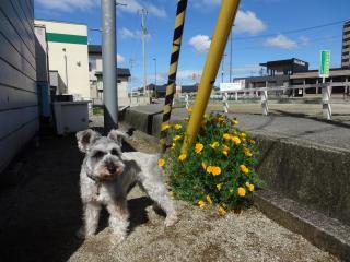 花より…☆