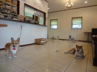カフェにてお迎えを待ってま~す♪