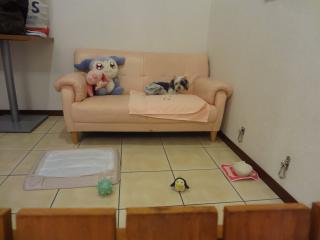 ソファー寝室♪