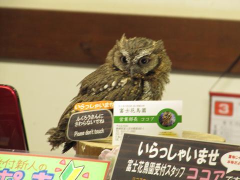 IMG_花鳥園3