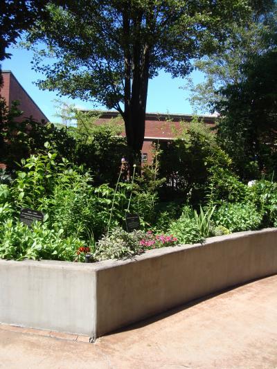 chinese+garden+060_convert_20120529145512.jpg