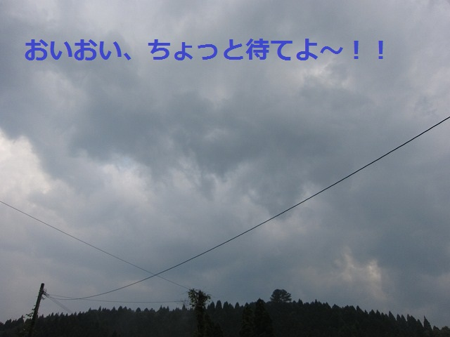 IMG_1713.jpg