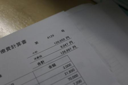 虎太 今日の診療費