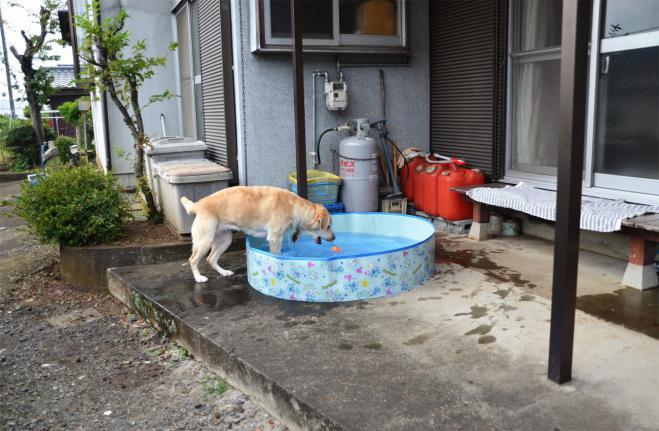 20120729jitaku1.jpg