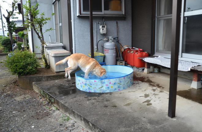20120729jitaku2.jpg