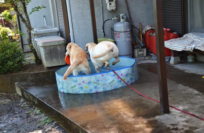20120731jitaku2.jpg