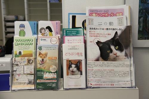 一犬猫病院・大阪府職員視察 020