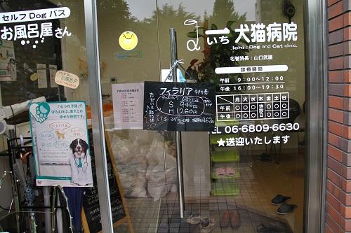 一犬猫病院・大阪府職員視察 026