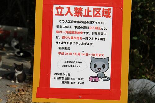 石垣島H2410月 043