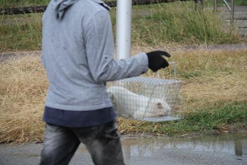 石垣島H2410月 090