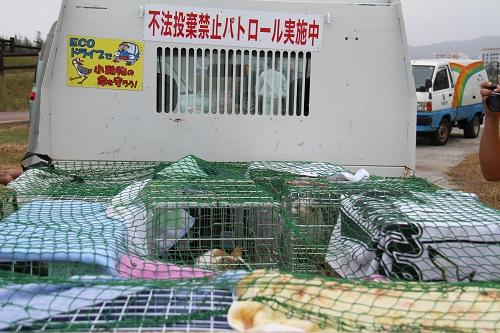 石垣島H2410月 592