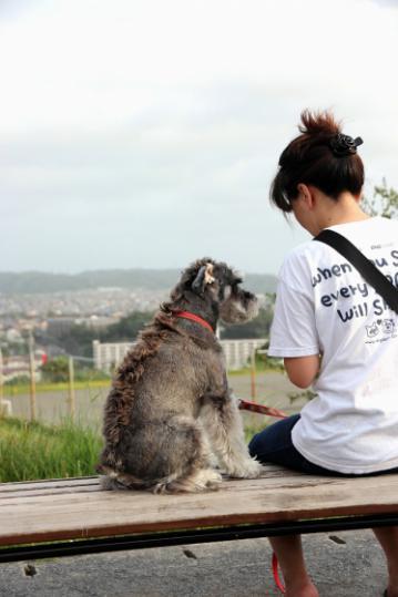 Img133_dog_big.jpg
