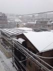 __ 3雪