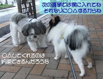 DSCF8495.jpg