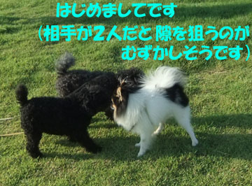 DSCF9893.jpg