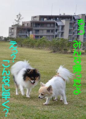 DSC_8333.jpg