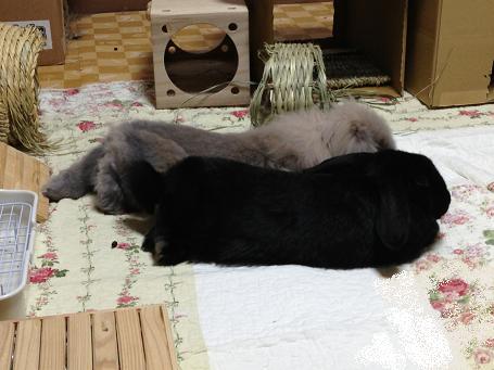 草木も眠る丑三つ時2
