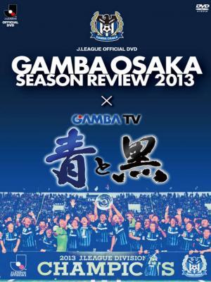 ガンバ大阪DVD シーズンレビュー2013