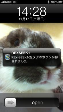 REX-SEEK