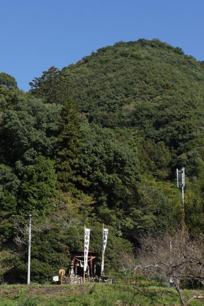 akiho006.jpg
