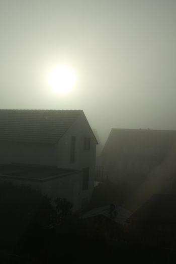 09November2012-01.jpg