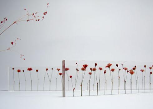 flower-jyougi2[1]