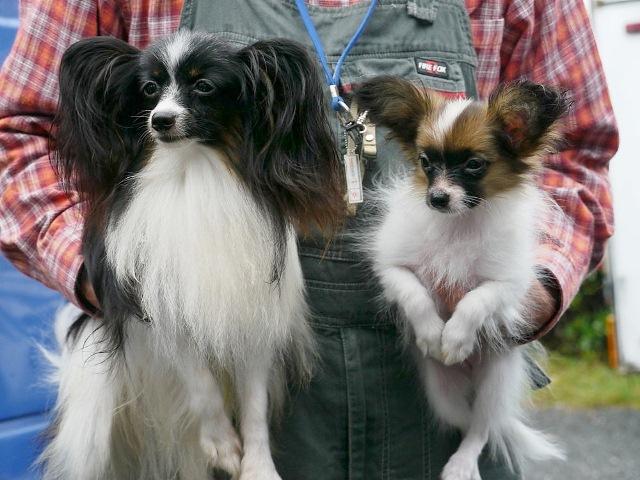 ベリー&Wimiちゃん2