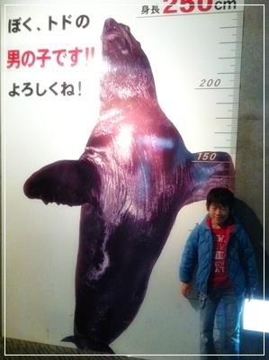 2012-11-23_17.jpg