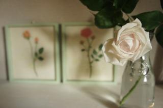 ウチのバラ