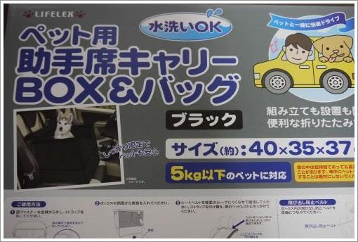 P1250085 (500x334)