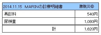 20141115 診療明細書【MARIN】