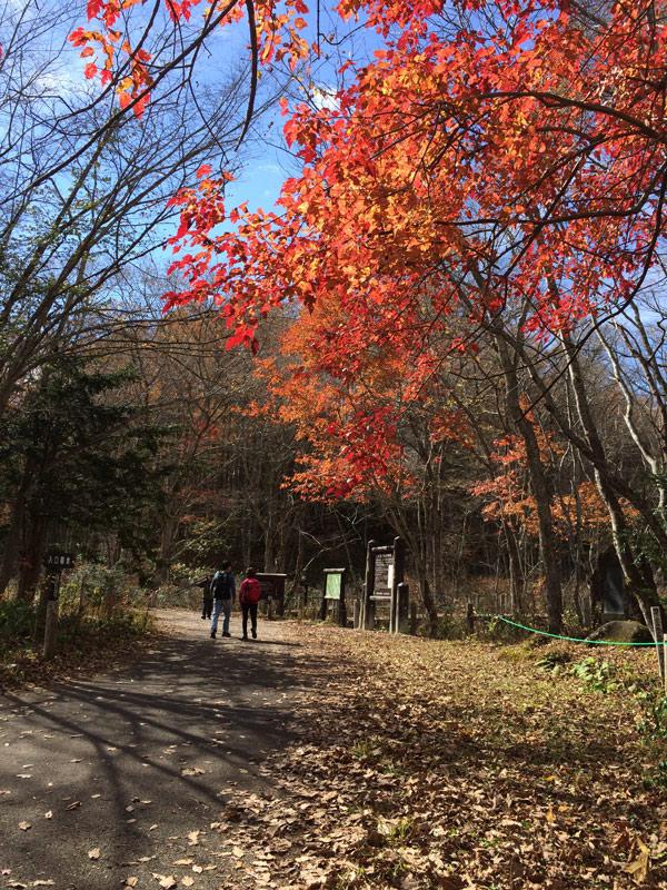 2014-10-戸隠森林植物園IMG_0585