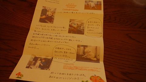 P1160325.jpg