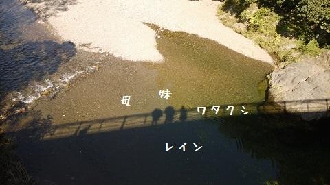 P1160512.jpg