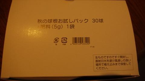 P1160899.jpg