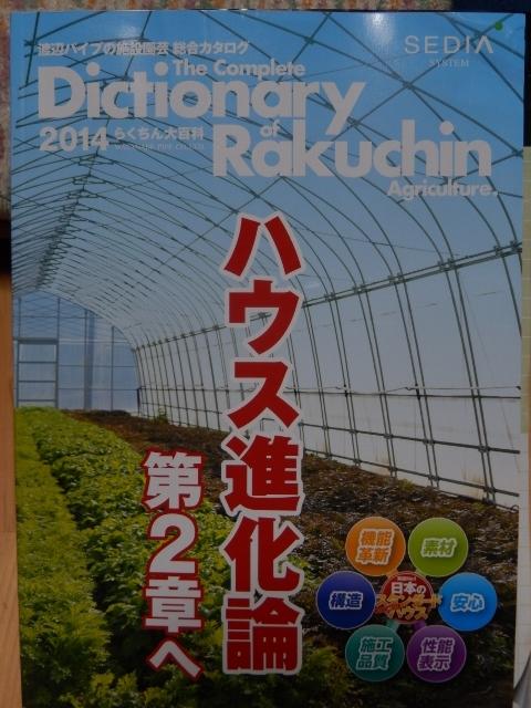 DSCN3645 (480x640)