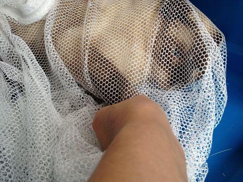 妃那2012090903写真