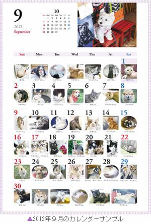2012_366wankonyanko_calendar9.jpg