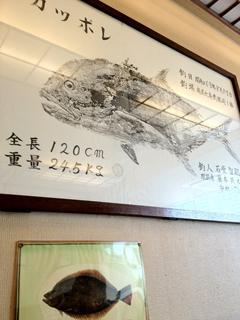 0908魚拓