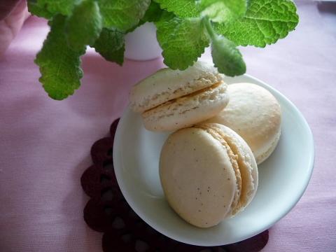 バニラマカロン&紅茶バタークリーム