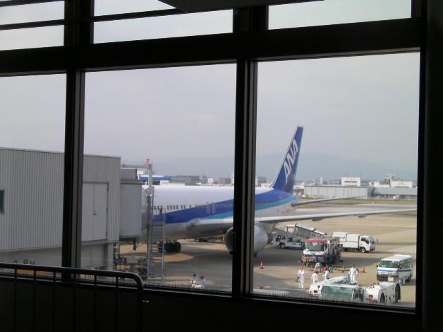 SANY4693.jpg
