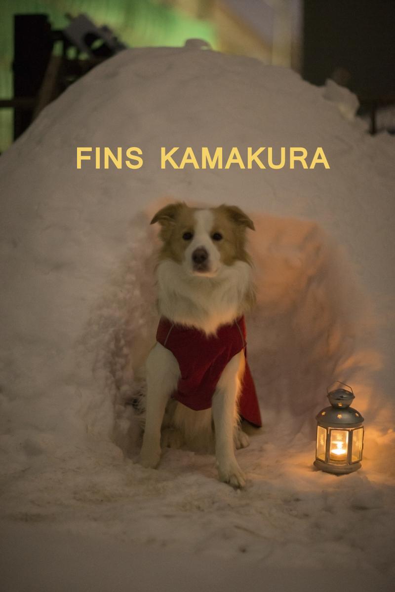 FINS  KAMAKURA