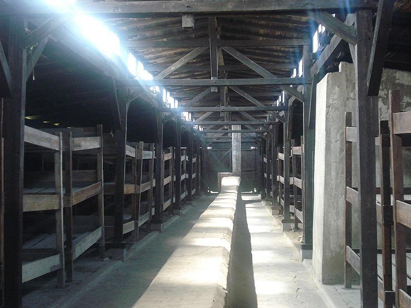 800px-Latrinen_und_Baracken_in_Auschwitz.jpg