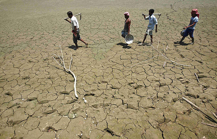 B_Id_379336_India_worst_drought.jpg