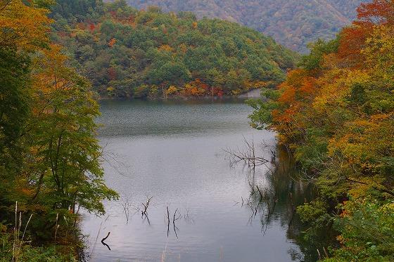 131106徳山湖-3