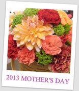 2013MOTHER'S DAY GIFT