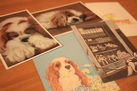 dogdog1.jpg